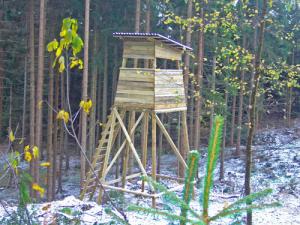 Wald Kanzel Bock integriert